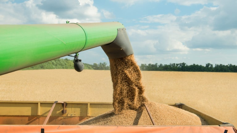 Growth of Russian wheat production is a threat to US farmers